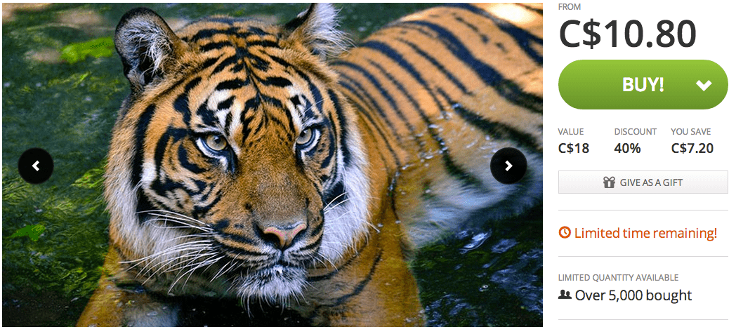 Screen Shot 2014 10 20 at 6.45.27 PM Groupon Canada Offers: Get 40% Off Toronto Zoo Admission For Child, Senior or Adult!