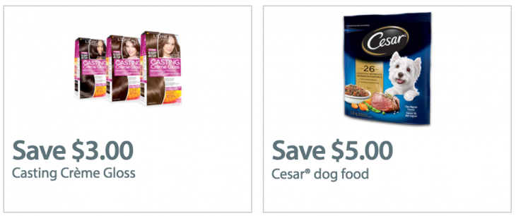 graphic relating to Free Printable Cesar Dog Food Coupons referred to as Cesar pet dog foodstuff discount codes canada 2018 : Chase financial institution refreshing examining